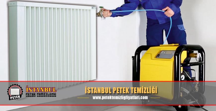 İstanbul Petek Temizliği